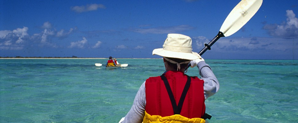 Kayak and Camp Tours
