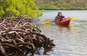 Kayaking - Princess Bay