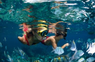 Snorkeling Underwater in St. John
